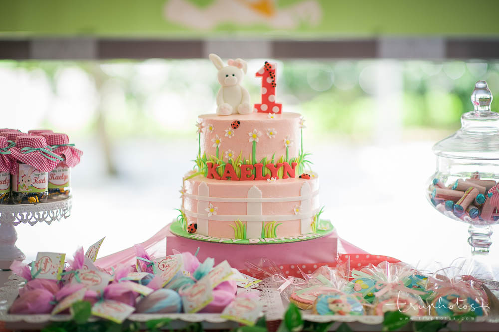 Adorable bunny cake decorated in pink and garden colours!