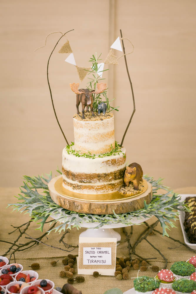 Jungle theme two-tier cake