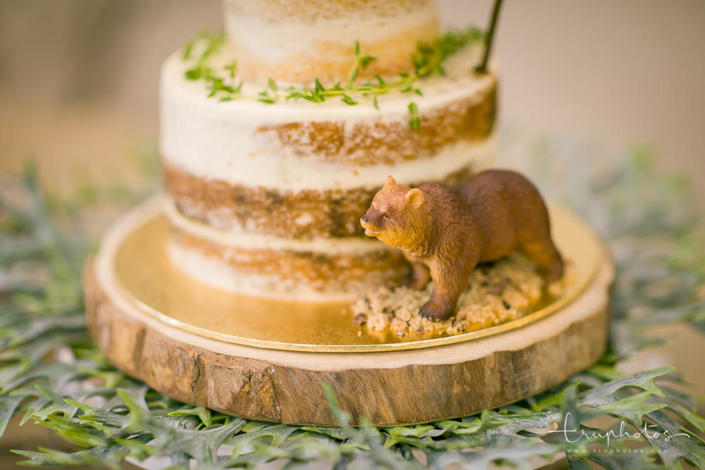 Jungle theme two-tier cake